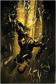 Deus Ex: The Graphic Novel: Robbie Morrison: 9780857685001: Amazon.com