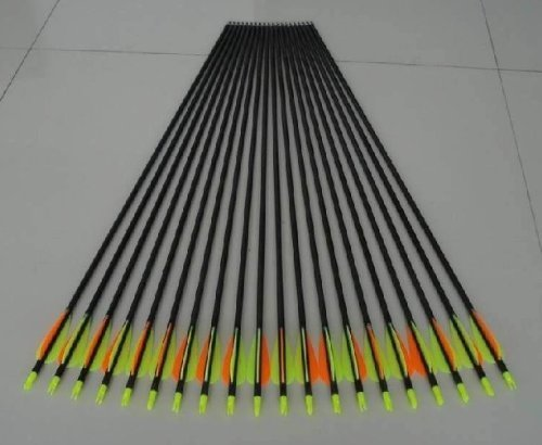 Golden Power Fiberglass Practice/hunting Arrows Point for Compound Bow 28'' Inches, 12 Arrows
