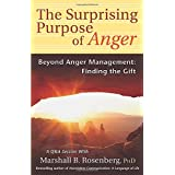 Surprising Purpose of Anger: Beyond Anger Management: Finding the Gift (Nonviolent Communication Guides)