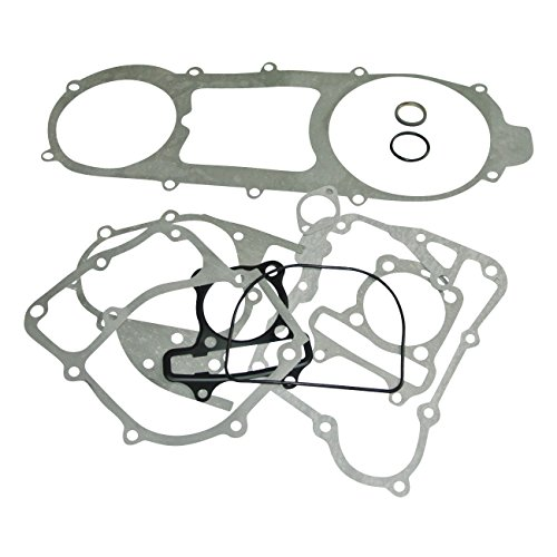 Amazon Com Sthus Complete Scooter Moped Go Kart Engine Head Gasket