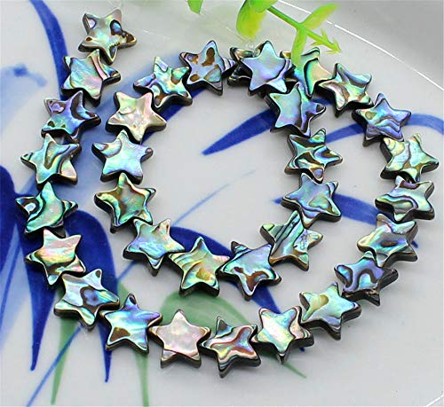QTMY 10 PCS Natural Abalone Shell Spacer Beads for for sale  Delivered anywhere in USA
