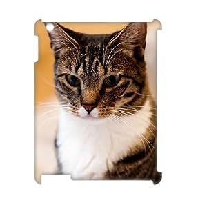 Winfors American Short Hair Cat Phone 3D Case For IPad 2,3,4 [Pattern-3]