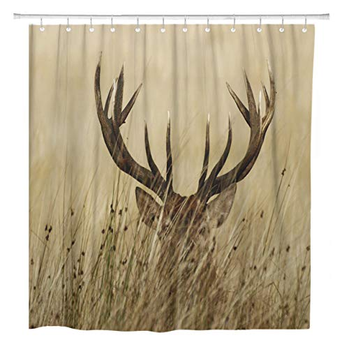 ArtSocket Shower Curtain Brown Deer Stag Buck Whitetail Park Richmond Season Big Home Bathroom Decor Polyester Fabric Waterproof 72 x 72 Inches Set with Hooks