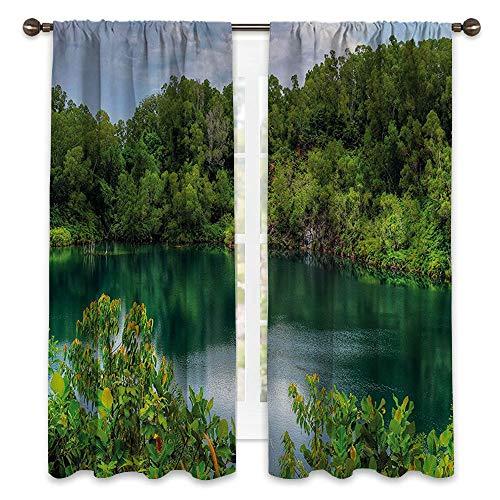 SATVSHOP Wide Blackout Curtains, Keep Warm Draperies, Sliding Glass Door Drapes - 84W x 72L -for t Pulau Ubin Singapore Lagoon Tropical Climate ainfor t Fr hn s Growth Lush ()