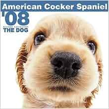 Cocker Spaniels (Pet Care (Crabtree)) by Bobbie Kalman,Marc Crabtree,Kelley MacAulay