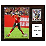 C and I Collectables NFL 15W x 12H in. Jameis Winston Tampa Bay Bucs Player Plaque