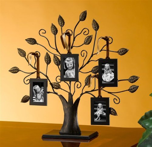 Tree Of Life Hanging Photo