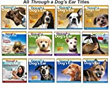 Through a Dog's Ear 2: Music to Calm Your Canine