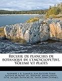 Recueil de Planches de Botanique de l'Encyclope?Die. Volume V. 1 Plates, Audebert B., 1248126114