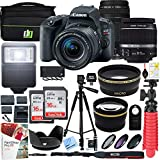 Cheap Canon EOS Rebel SL2 24MP SLR Digital Camera w/EF-S 18-55mm is STM Lens Black and EF 75-300mm f/4-5.6 III Lens and 2X 16GB Memory Card Plus Triple Battery Accessory Bundle