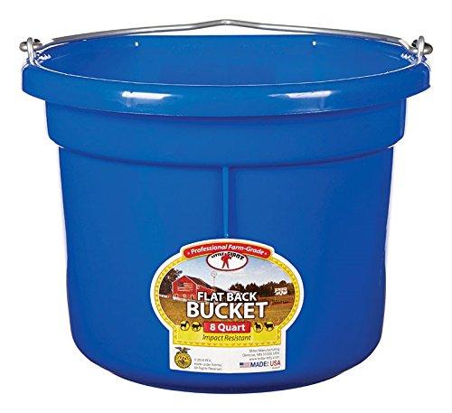 Miller Manufacturing P8FBBLUE Plastic Flat Back Bucket for Horses, 8-Quart, Blue by Miller