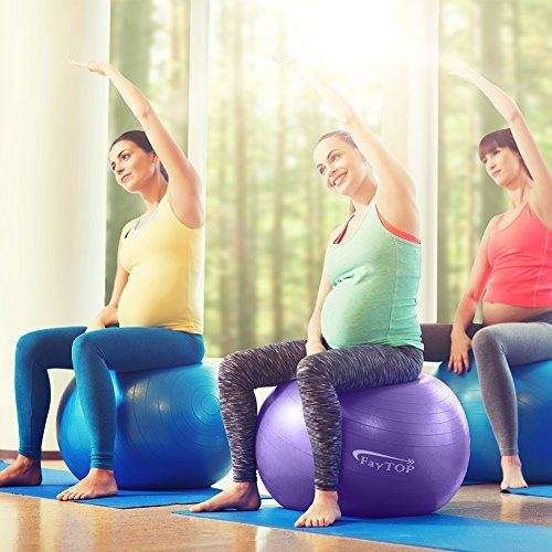 Stability Ball Manual: 65cm Exercise Ball EXTRA THICK Frosted Surface 2200lb