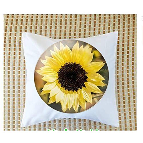 Sunflower Necklace - Sterling Silver Flower Neckla Pillow bolster ,Bible Quote Pillow bolster - Christian Insect Art Pillow bolster,Keychain,Pillow bolster Customized Gift,Everyday Gift Pillow bolster ()