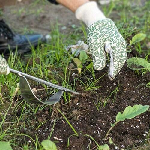 con Manico in Legno Sarchiatore Manuale da Giardino Prato CerisiaAnn per Giardino Fattoria