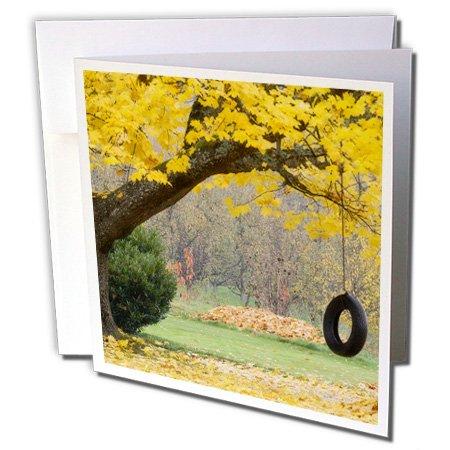 Danita Delimont - Oregon - Oregon, Hood River, tire swing, tree branch - US38 BJA0680 - Jaynes Gallery - 6 Greeting Cards with envelopes (gc_93683_1)