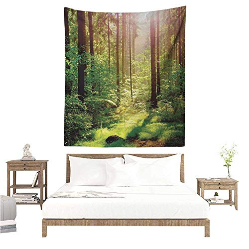 Agoza Forest Living Room Tapestry Forest in Spring Time Sunset Moss Woods Leaf Wilderness Fantasy Magical View Print Occlusion Cloth Painting 51W x 60L INCH Green Brown