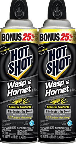 Hot Shot Wasp & Hornet Killer (Aerosol) 17.5-ounce, 2-PK