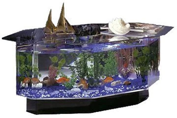Midwest Tropical Fountain Aqua Coffee Table Aquarium Tank