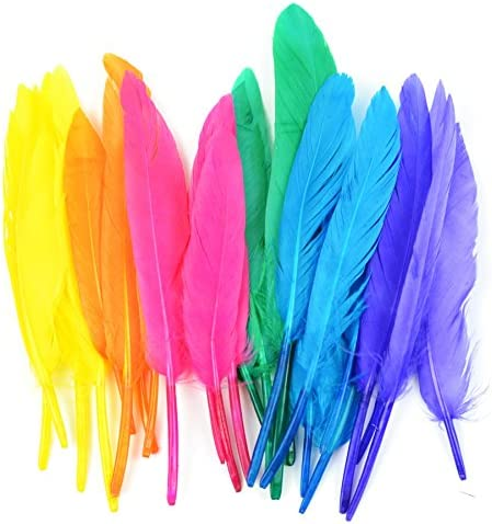 Touch of Nature 24//pkg Mini Indian Feathers for Arts and Crafts Assorted Mix 3-Inch