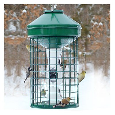 Woodlink Naav1Mnp Caged Seed Feeder, 1 Count by Woodlink