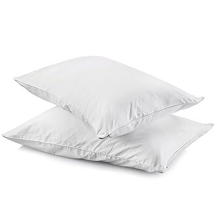 Amazon Haoran 40Pack Premium Cotton Allergy Pillow Cases With Beauteous Pillow Case Covers Dust Mites