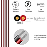 LightingWill 2Pin 8mm LED Strip Connector Series