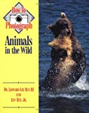 How to Photograph Animals In The Wild (How To Photograph Series)