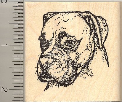 Detailed Boxer Dog Profile Rubber Stamp (Riggley) - Wood Mounted