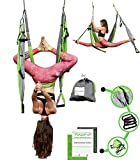 YOGATAIL Aerial Yoga Swing - [New Edition] Gym Strength Antigravity Yoga Hammock - Inversion Trapeze Sling Equipment Perfect Yoga Gift - Blue Pink Grey Swings & Beginner Instructions Green