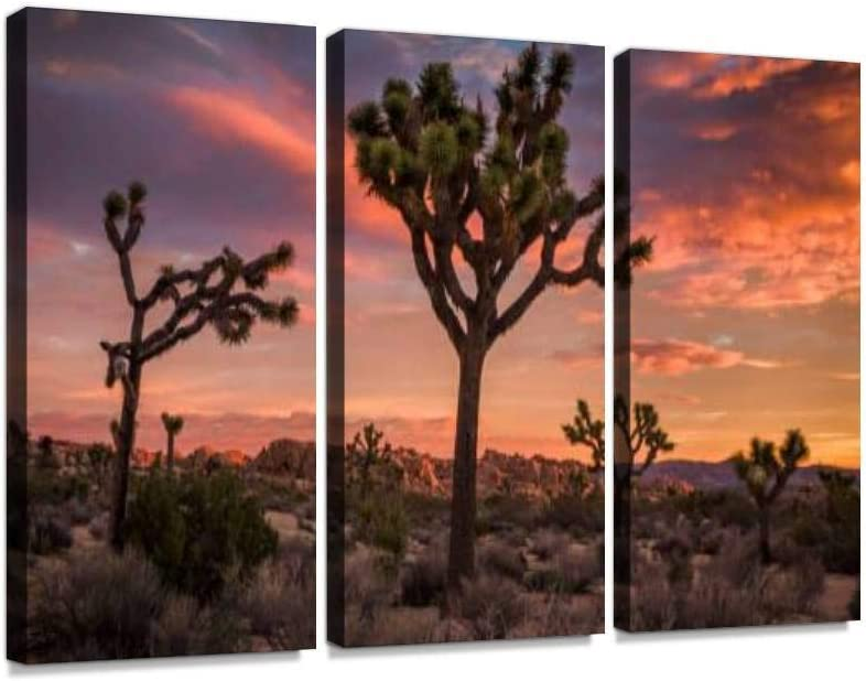 YKing1 Joshua Tree Desert Landscape at Sunset Romantic Sunsets and Pictures Wall Art Painting Pictures Print On Canvas Stretched & Framed Artworks Modern Hanging Posters Home Decor 3PANEL