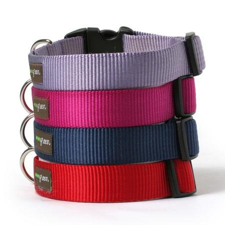 Nylon Dog Collar-M-RASPBERRY