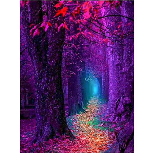Loneflash DIY 5D Diamond Painting, Forest Path Crystal Embroidery Pictures Cross Stitch for Home Wall Decoration,Full Drill