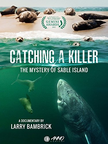 Catching A Killer: The Mystery Of Sable Island Greenland Body