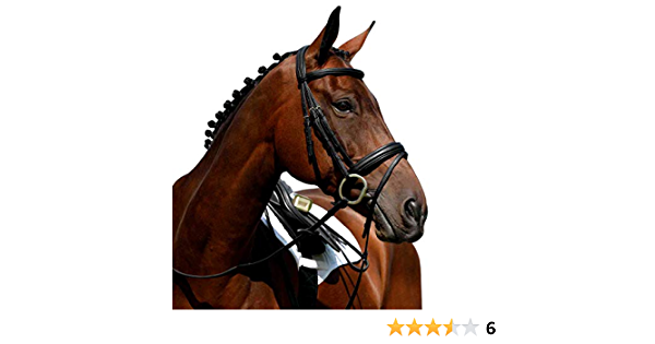 49.99 COLLEGIATE SYNTOVIA PADDED FLASH BRIDLE RRP BLACK OR BROWN