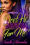 Bargain eBook - Does He Know You Were Meant for Me