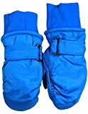 Winter Warm-Up - Little Boys Ski Mittens, Royal 36463-onesize