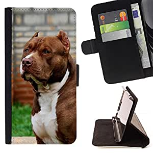 - Queen Pattern FOR Apple Iphone 6 /La identificaci????n del cr????dito ranuras para tarjetas tir????n de la caja Cartera de cuero cubie - pit-bull American dog Boston terrier ca