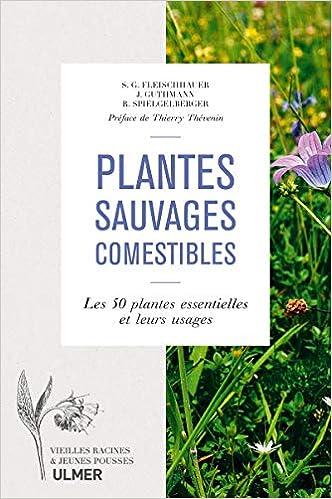 Plantes Sauvages Comestibles Les 50 Plantes Essentielles