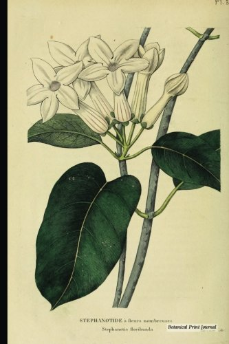 Botanical Print Journal: Stephanotis Floribunda, 6 X 9 Vintage Botanical Flower Print Journal - [lined Journal]