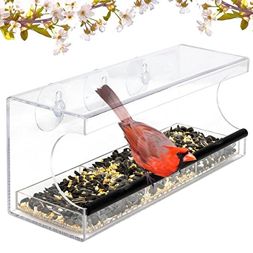 Jade Active Acrylic Window Bird Feeder Strong Suction Cups - Easy Outside Installation - Squirrel Proof Bird Feeder fits Kitchen Living Room Window (Outside Window)
