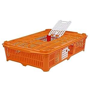 Aves Caja de transporte para palomas/wachteln, Naranja, 67x 40x 13cm