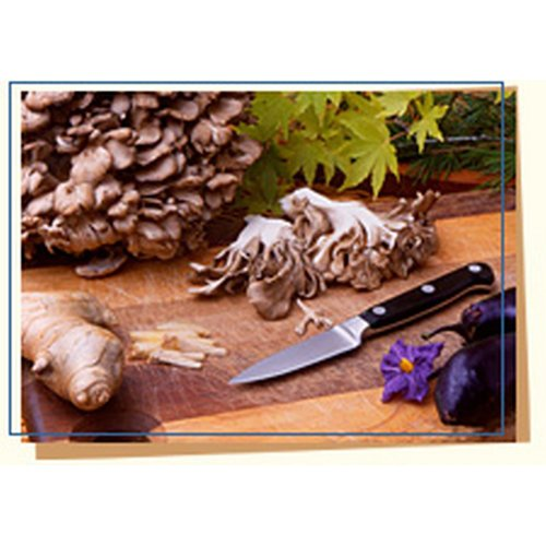 Cult Hen-of-the-woods Maitake - 5 Lb Unit by Gourmet555