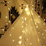 LED String Lights, by myCozyLite, Plug in String Lights, 49Ft 100 LED Warm White Lights with Timer, Waterproof, Perfect for Indoor and Outdoor use with 31V Low Voltage Transformer, Extendable (Full Pack)