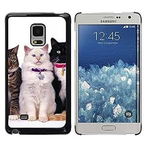 TopCaseStore / la caja del caucho duro de la cubierta de protección de la piel - Nebelung Cats American Longhair Bobtail - Samsung Galaxy Mega 5.8 9150 9152