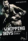 Whipping Boys: Gay S/M Erotica
