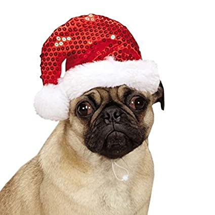Christmas Hats For Dogs.Amazon Com Red Sequin Santa Hats For Dogs Christmas