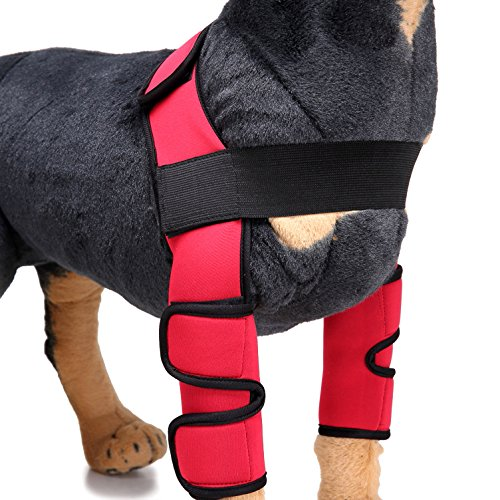 Ranphy Dog Leg Brace Front Leg Elbow Support Wrap Protector for Torn ACL Compression Wraps for Wound Healing Injury Preventing Arthritis Recovering Pair Red L