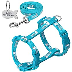 Didog Reflective Adjustable Cat Harness Nylon Strap Collar and Leash Colorful and Cute Panda Pattern, with Fish Shaped ID Tag for Cats and Small Dogs,Blue