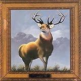: 12 Point Buck [Vinyl]