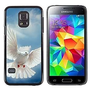 Paccase / Dura PC Caso Funda Carcasa de Protección para - Bird Dove Wings Flying Sky God Hope - Samsung Galaxy S5 Mini, SM-G800, NOT S5 REGULAR!